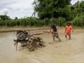 Mensukseskan program swasembada Pangan, Babinsa Turun langsung dalam pengolahan lahan Sawah