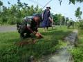 Penghijauan di SepanjangJalan di Wilayah Koramil 0811/04 Merakurak