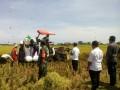 Babinsa Koramil 0811/02 Palang Dampingi Direktur perbenihan  Dirjen Han Pangan Nasional Distan pusat di  Wilayah Palang