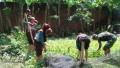 Latihan Rutin Gerakan Pramuka SWK Koramil 08 Widang Di isi Dengan Sosialisasi Budidaya Ikan Air Tawar