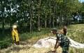 Upaya Khusus Babinsa untukmewujudkan Swasembada Pangan dalam pendampingan panen padi