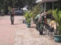 Koramil 0814/12 Kesamben Budayakan Cabe Sistem Polybag
