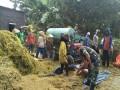 Wujudkan Swasembada Pangan, Koramil 0815/03 Sooko Lakukan Pendampingan Panen Padi