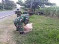 Kepedulian Anggota TNI Dalam Perawatan Dan Pemupukan Pohon Dalam Rangka Penghijauan Di Ruas Kiri Kanan Jalan