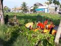 Karyabakti Kodim 0812 Lamongan Dalam Peduli Lingkungan Bersama Tiga Pilar Di Kec Deket