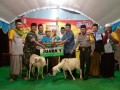 TNI KORAMIL MALO LAKUKAN PENGAMANAN FESTIVAL TOK TOK KLER