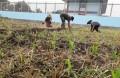 Babinsa Tampungrejo Dampingi Petani Lakukan Pengairan Tanaman Jagung