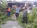 Bersama Tim TRC BPBD & Relawan Babinsa Evakuasi Pohon Tumbang