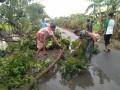 Personil TNI AD Turun Langsung Membantu Korban Bencana Angin Puting Beliung Di Kota Tuban