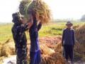 Babinsa Koramil 0815/07 Jetis Dampingi Poktan Pengolahan Lahan Di Tiga Lokasi