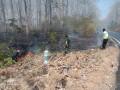Koramil 0814/07 Kabuh Padamkan Kebakaran Hutan