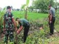 Kodam V Brawijaya Laksanakan Monev Penghijauan Diwilayah Kodim Bojonegoro