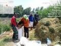 Pendampingan Upsus Swasembada Pangan Di Wilayah Koramil 0815/06 Kemlagi